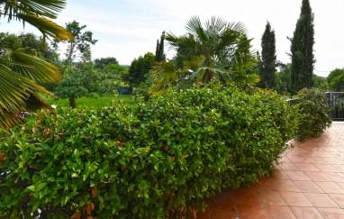Villa Micheline